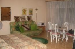 1-room Kiev apartment #001