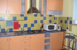 1-room Kiev apartment #010