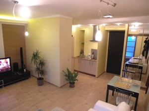 1-bedroom Kiev apartment #015