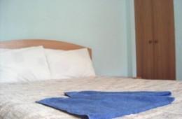 1-room Kiev apartment #031