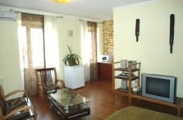 1-room Kiev apartment #052