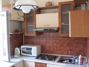 1-room Kiev apartment #055