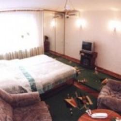 1-room Kiev apartment #046